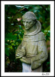 St Francis with bird