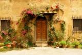 893DSC08175.jpg Italy Roses :)