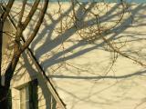 DSCN9465 shadows.jpg