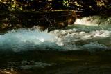 DSC05931waterjune16.jpg