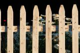 DSC07263.jpg where i live.. my neighbors fence garden... off to lighthouse at dawn