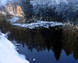 Frozen Floaters