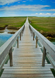 Footbridge @ Cape Cod  # 5.06-5883
