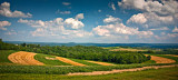 Swerls - Cambria County ,  PA
