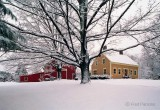White Christmas - Holliston, Massachusetts