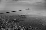 IMG_1718 - Dead Sea