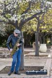 Balboa park saxaphone man