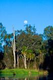 Dawson moon rise