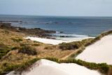 Sand dunes and west coast beach