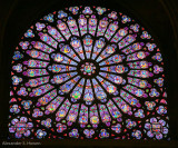 Notre Dame stain glass