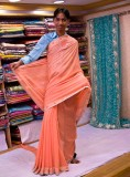 Sari model