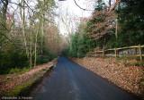 Around Surrey