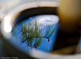 Tank reflection