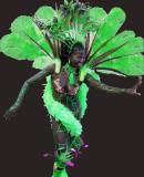 Carnaval de Barranquilla 2007 By Oscar Robles   kurrambero@hotmail.com