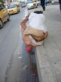 No necesita palabras.  En que mundo vivimos? . Barranquilla Colombia