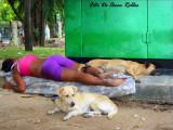la Loca de los perros