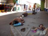 En todas las esquinas de Barranquilla  reina la miseria