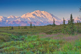 40-13507  - Denali meadows