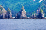 88775 - Kenai Fjords National Park