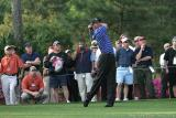01960c -  Tiger Woods