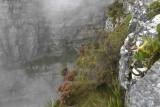 Cliff Table Mountain