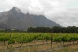 Franshoek - Wine Country