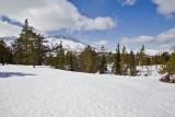 Slettefjell, Eastern 2009