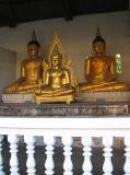 Budda's