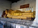 Resting Budda