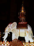 Chiang (elephant)