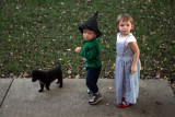 Toto, Scarecrow, and Dorothy