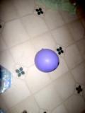 Le Ballon Violet