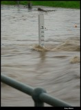 06 Feb - Minto flood channel at 2.2 meters