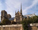Cathédrale Notre Dame de Paris - At Mass #4