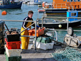 Ballycotton Pier - Bringing in the catch