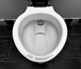 Period style toilet. #2 :)