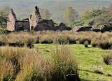 An Irish Ruin