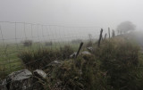 Wire fence in the mist