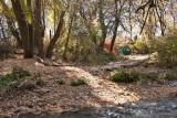 7534 Trail.jpg