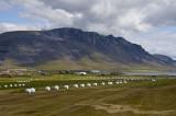 Farm on way to NW Coast and Hvalfjordur