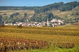 Small wine village