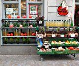 Store front in Regensburg
