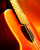Jan 8: Music
