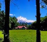 Bann Farang back view