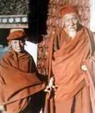 Great Gurus