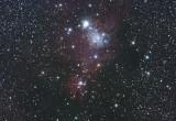 NGC2264  07-Feb-2008