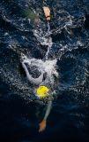 Salford - Triathlon Swim II