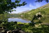 Wales June 2006