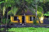 Kerala 08