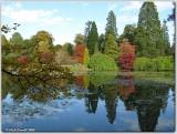 Sheffield Park Garden (2)